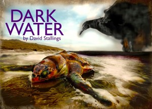 "Manhattan Theatre Works presents ""Dark Water"" by David Stallings, directed by Heather Cohn"