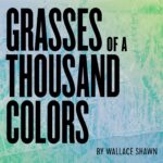 Gideon Productions presents GRASSES OF A THOUSAND COLORS, written by Wallace Shawn, directed by Andre Gregory